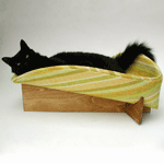 2-2_modcatbed